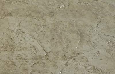 סלע פראי