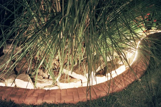 תאורה אחורית בתוחם דשא