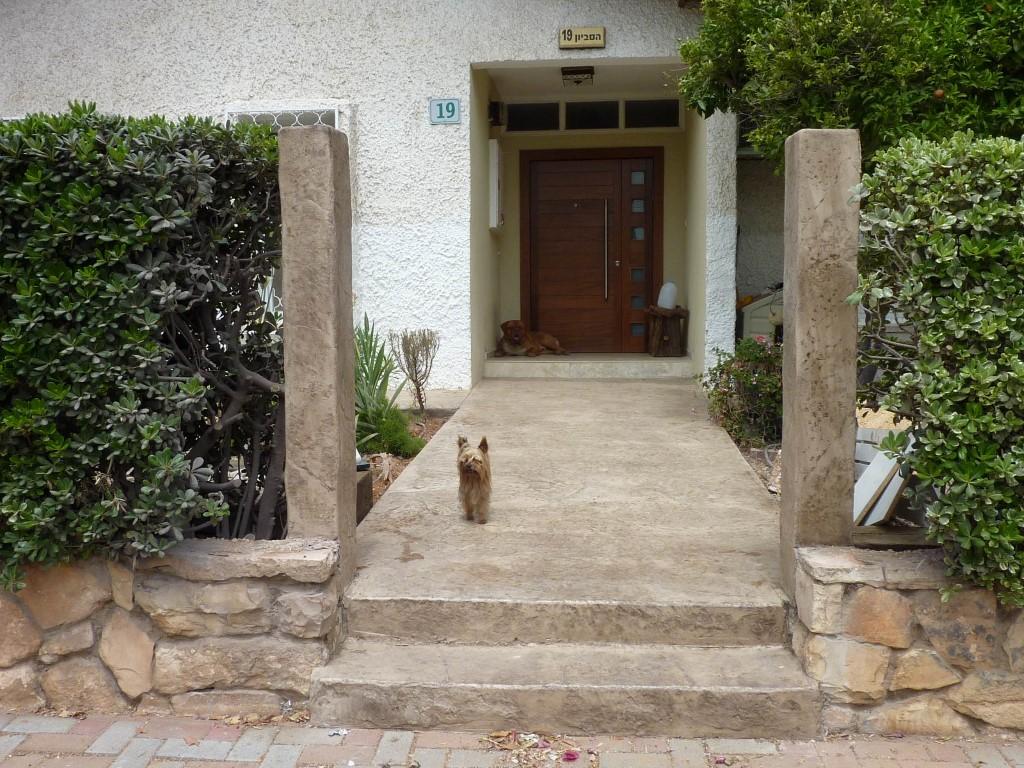 מדרגות וכבש כניסה לבית פרטי