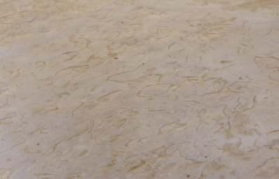 בטון מוטבע סלע רדוד